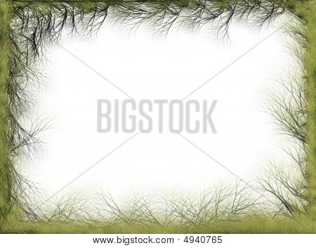 Abstract Spring Nature Border