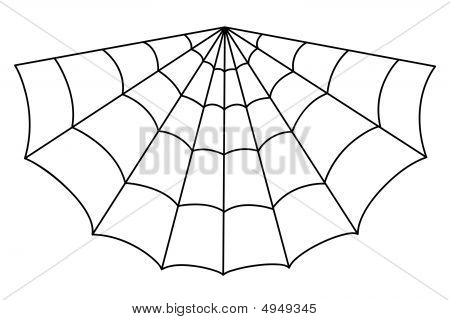 Isolated Spider Web Illustration