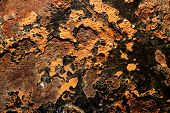 Rusty steel texture marine environment rusted metal surfaces poster