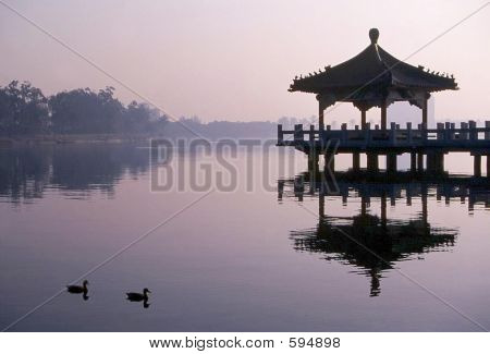 Duck Pond/pergola