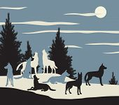Editable vector illustration of a wolf pack howling at the moon poster
