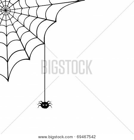 Spider web and spider. Vector illustration.