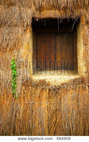 Straw Window