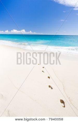 Barbados in Caribbean