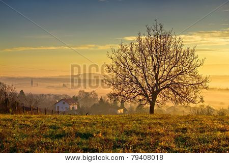 Town Of Krizevci  And Landscape In Morning Fog