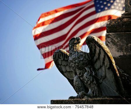 U.S. Flag behind American Eagle