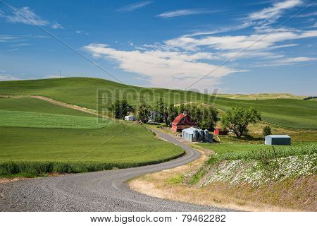 Red Barn And Daily Farm In Beautiful Countryside In Palouse