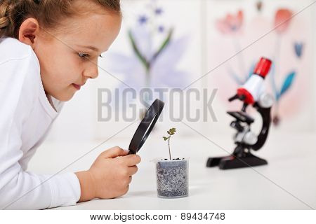 Young girl study a plant growing in plastic recipient - science class in elementary school