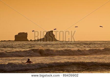 Unidentified tourist surfer enjoying the sea during sunset, Puerto Lopez, Ecuador
