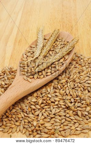 Barley And Spoon