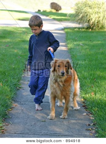 poster of boy taking golden retriever for a walk
