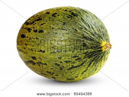 One Fresh whole Piel de sapo melon on white background