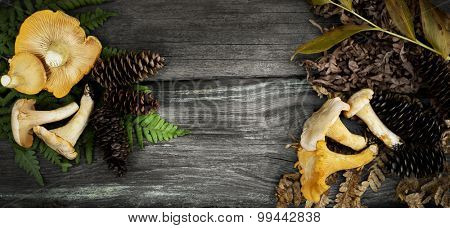 chanterelle mushrooms, fir-cones and grass  on the wooden background