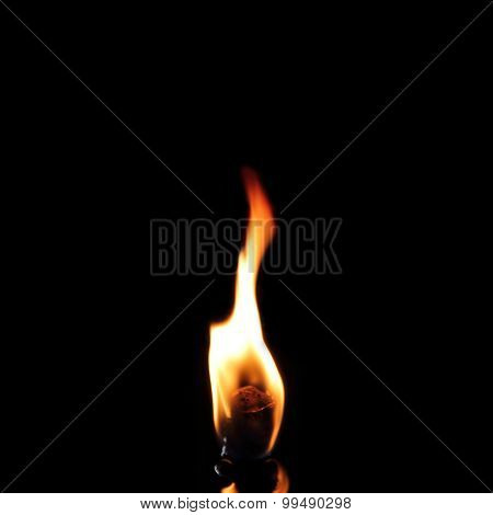 Burning Flame In Darkness