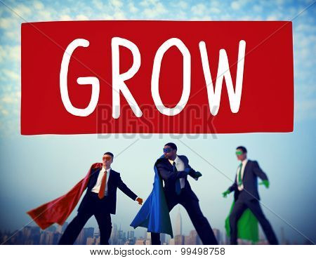 Grow Growth Development Improvement Increase Concept poster