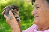 An image of senior woman holding kitten poster