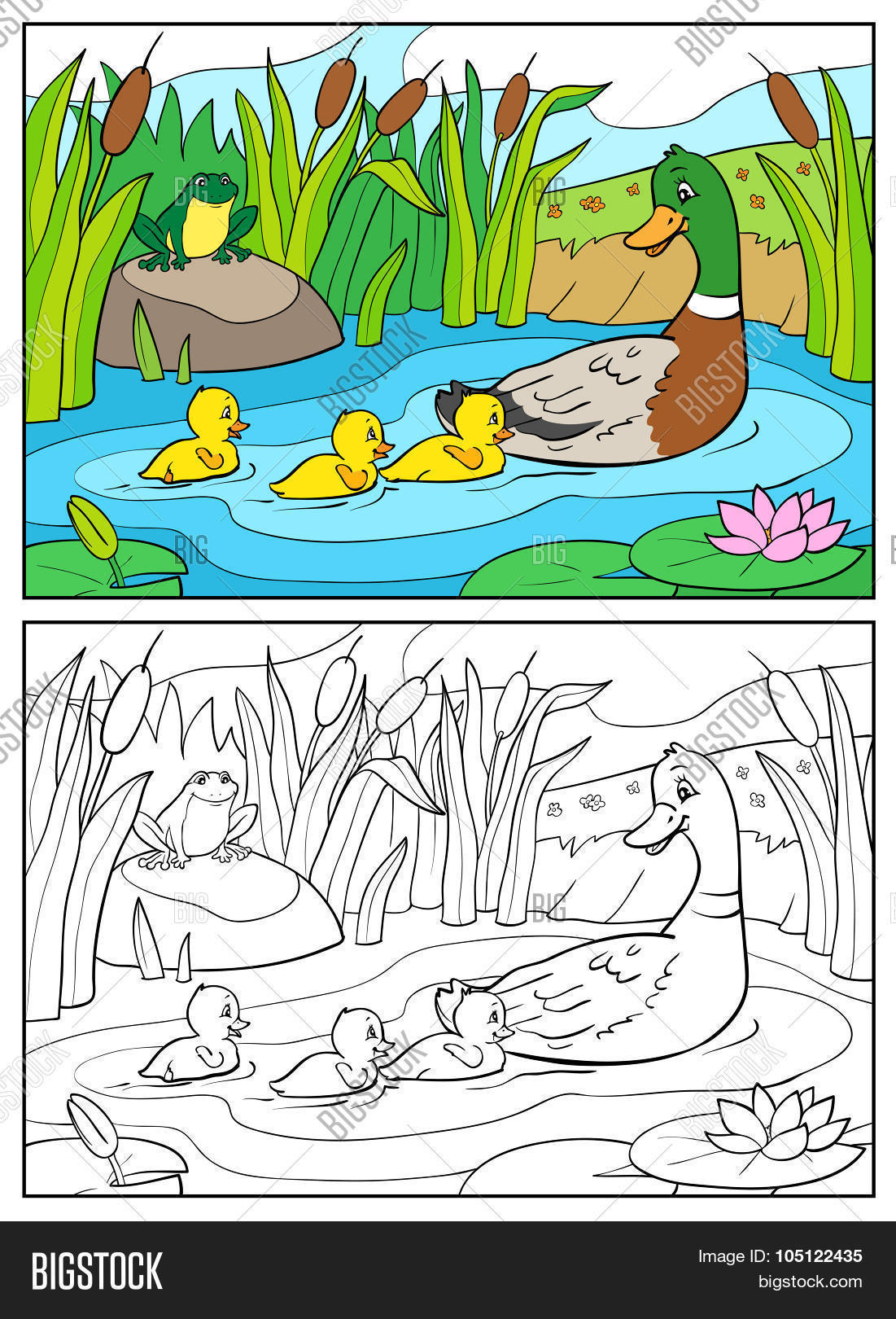 Coloring Book Mother Duck And Ducklings With Frog