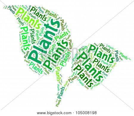 Plants Word Shows Text Botany And Foilage
