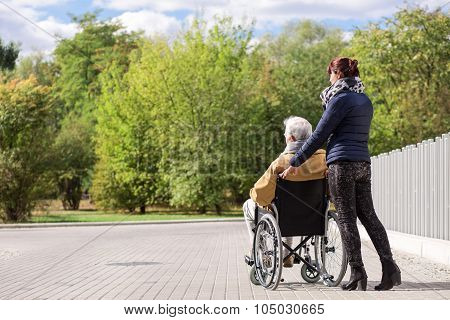 Disabled Senior In The Park