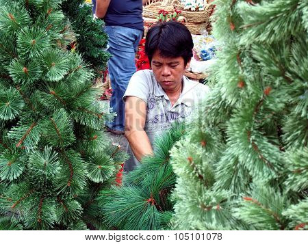 man prepares Christmas trees for selling in a store in Dapitan Arcade