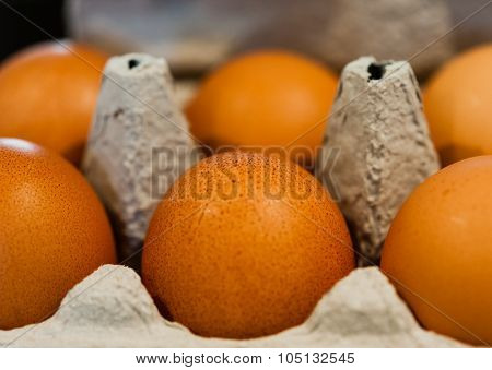 Macro Of Brown Eggs In Gray Egg Carton