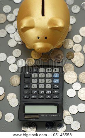 Golden piggy bank looking to calculator