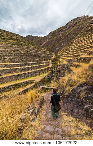 Tourist exploring the Inca Trails and the majestic terraces of Pisac Sacred Valley major travel destination in Cusco region Peru. Vacations and adventures in South America. poster