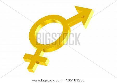 Androgyny Gender Symbol