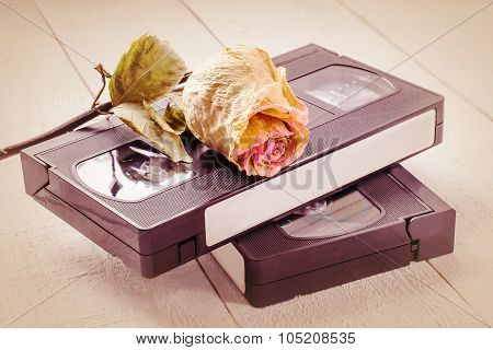 The Old Video Tapes And Dried Rose. Tinted Photos