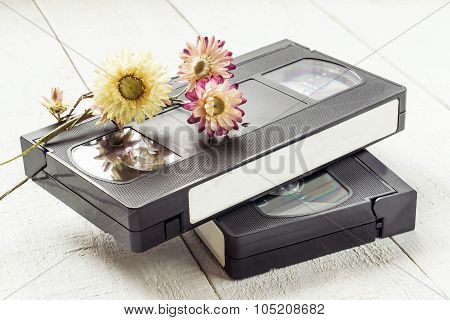 Old Videotapes And Dry Flowers