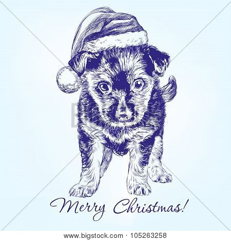 Christmas puppy in Santa stocking hat hand drawn vector llustration realistic sketch