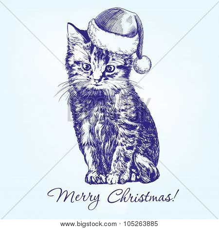 Christmas kitten in Santa stocking hat hand drawn vector llustration realistic sketch