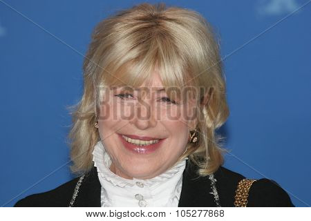BERLIN - FEBRUARY 13: Singer Marianne Faithfull attends a photo call to promote the movie 'Irina Palm' during the 57th Berlin  Film Festival  on February 13, 2007 in Berlin, Germany