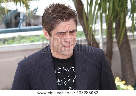 CANNES, FRANCE - MAY 12: Juror Benicio Del Toro attends the Jury Photocall at the Palais des Festivals during the 63rd Annual Cannes International Film Festival on May 12, 2010 in Cannes, France