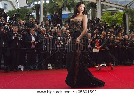 CANNES, FRANCE - MAY 18: Megan Gale attends 'Jimmy P. (Psychotherapy Of A Plains Indian)' Premiere during the 66th Annual Cannes Film Festival at Grand Theatre  on May 18, 2013 in Cannes, France.