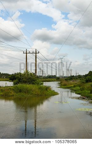 Powerlines In A Tropical Swamp