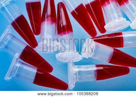 PCR tubes with a genetic sample