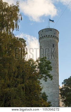 Pikk Hermann Or Tall Hermann Is A Tower Of The Toompea Castle, Tallinn, Estonia