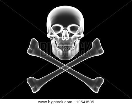 Skull And Crossbones X-ray Silhouette