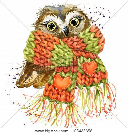 Cute Owl T-shirt Graphics, Snowy Owl Illustration With Splash Watercolor Textured Background. Illust