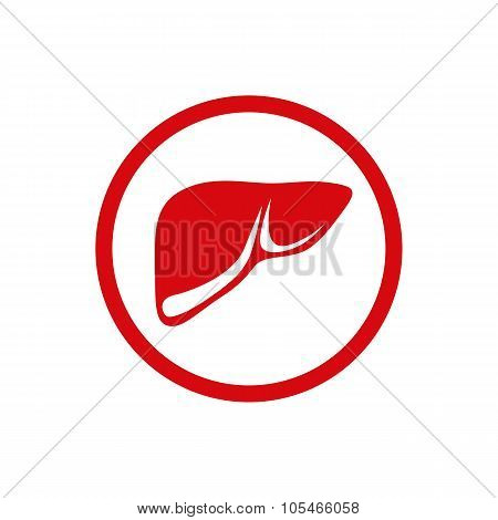Illustration Of The Human Internal Liver. Healthcare and medical theme design element.
