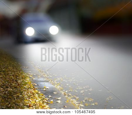 Car In Autumn