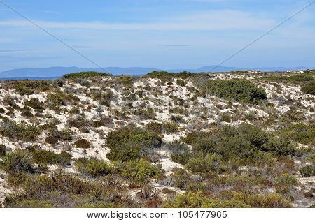 Dunes in the peninsula of Troia and view over the Arrabida ridge