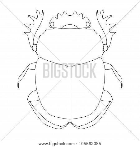 scarab. Geotrupidae dor-beetle . Sketch of dor-beetle. dor-beetle scarab isolated on white backgroun