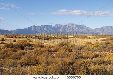 Cape Mountains With Dry Fynbos