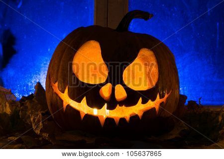 Photo For A Holiday Halloween, Pumpkin Jack