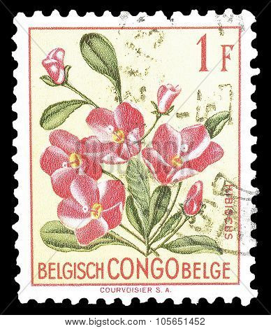 Belgian Congo 1952