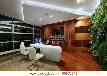 Interior Design: Modern elegant office