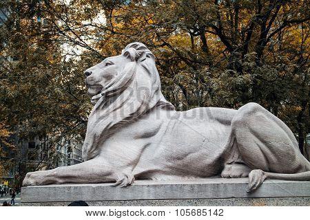 Lion Statue New York Public Library