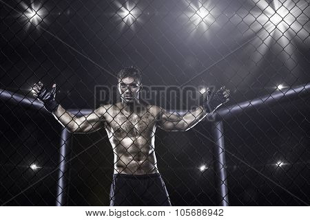fighter in mma cage arena